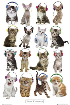Poster Keith Kimberlin - kittens headphones