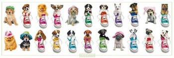 Poster Keith Kimberlin - sneakers and hats