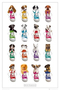Poster Keith Kimberlin – sneakers