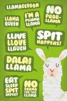 Poster Llama - Quotes