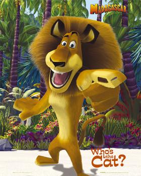 MADAGASCAR - alex Poster