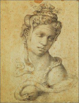 Michelangelo - Testa Di Cleopatra Art Print
