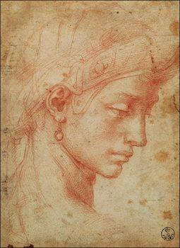 Michelangelo - Testa Art Print