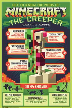 Poster  Minecraft - Creepy Behaviour