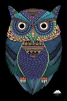 Poster Mulga - Michael the Magical Owl
