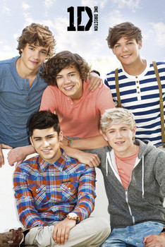 One Direction - bench Poster