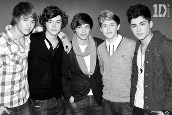 One Direction - black & white Poster