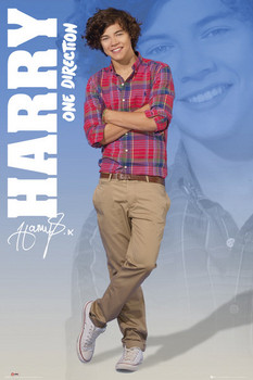 One Direction - harry 2012 Poster