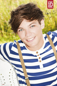 ONE DIRECTION - louis Poster