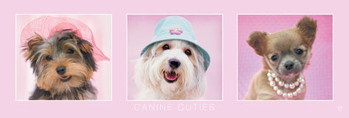 Rachael Hale - canine cuties Poster