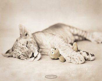 Rachel Hale - arjuna & teddy Framed Poster
