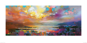 Scott Naismith - Marina Art Print