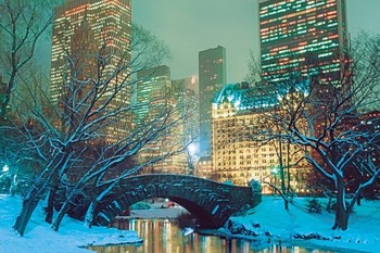 Snow in Central Park Poster