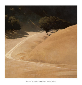 Sonoma Valley Backroad Art Print