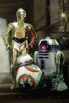 Poster Star Wars Episode VII: The Force Awakens - Droids