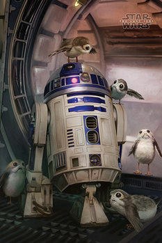Poster  Star Wars The Last Jedi - R2-D2 & Porgs