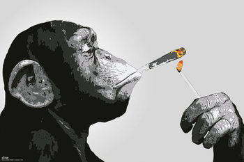 Steez - Monkey Smoking Poster