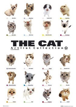 The cat - collection Poster