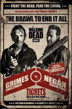 Poster The Walking Dead - Fight