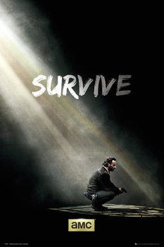 The Walking Dead - Survive Poster