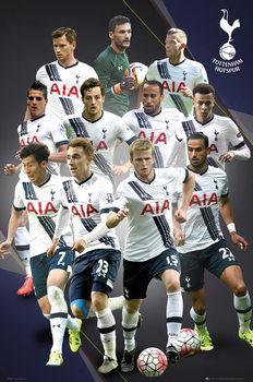 Tottenham Hotspur FC - Players 15/16 Poster, Art Print