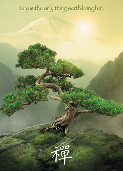 Zen Tree Poster, Art Print