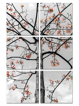 Black and White Tree with Red Leaves Mounted Art Print