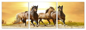 Horses - Running Horses on the Sand  Mounted Art Print