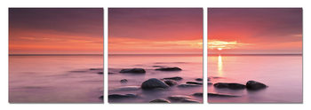 Pink Dream - Sunset Mounted Art Print