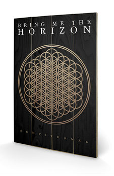 Bring Me The Horizon - Sempiternal Puukyltti