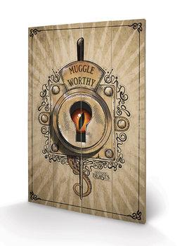 Ihmeotukset ja niiden olinpaikat - Muggle Worthy Puukyltti