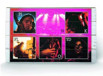 PINK FLOYD - live Puukyltti