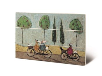 Sam Toft - A Nice Day For It Puukyltti