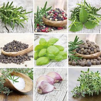 Quadro em vidro Green Herbs