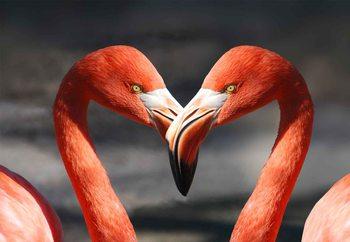 Quadro em vidro  Love Flamingoes
