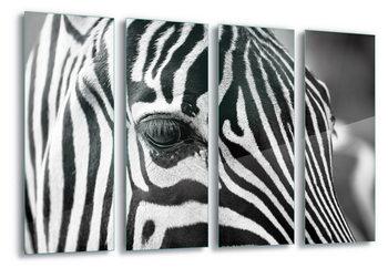 Quadro em vidro  Stripes