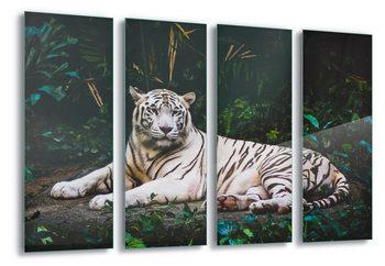 Quadro em vidro  White Tiger