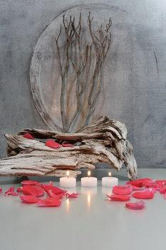 Quadro em vidro Zen - Fountain