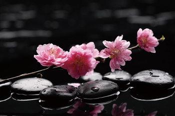 Quadro em vidro Zen - Pink Orchid 2