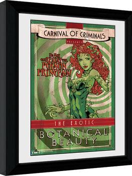 Batman Comic - Circus Poison Ivy Poster Emoldurado