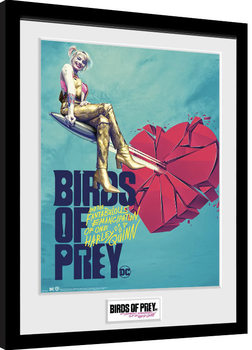 Birds Of Prey: And the Fantabulous Emancipation Of One Harley Quinn - One Sheet Bullet Poster Emoldurado