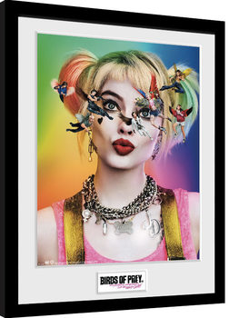Birds Of Prey: And the Fantabulous Emancipation Of One Harley Quinn - One Sheet Poster Emoldurado