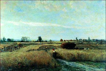 Reprodução do quadro  C.F.Daubigny - La Mietitura