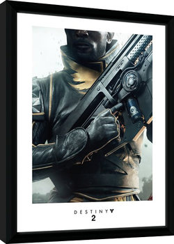 Destiny 2 - Warlock Poster Emoldurado