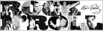Reprodução do quadro Elvis Presley - Rock n' Roll