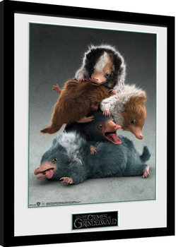 Fantastic Beasts 2 - Nifflers Poster Emoldurado