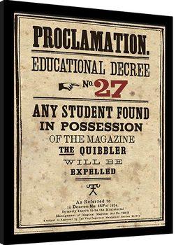 Harry Potter - Educational Decree No. 27 Poster Emoldurado