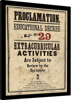 Harry Potter - Educational Decree No. 29 Poster Emoldurado