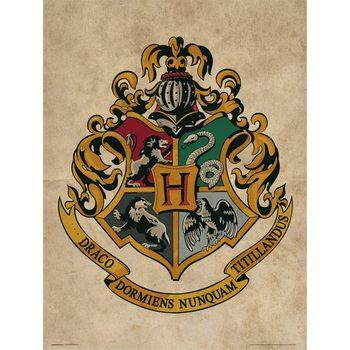 Reprodução do quadro  Harry Potter - Hogwarts Crest