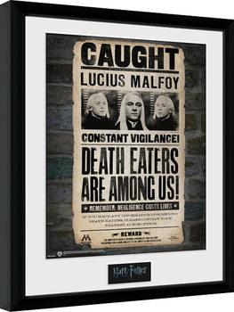 Harry Potter - Lucius Poster Emoldurado